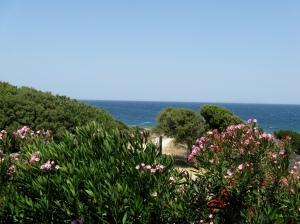 View from front verandah, Hostel Xenia